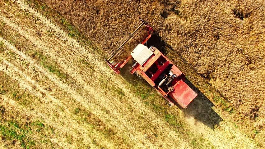 Aerial view of combine harvester. Harvest of rapeseed field. Industrial background on agricultural theme. Biofuel from Czech countryside. Agriculture and environment in European Union.