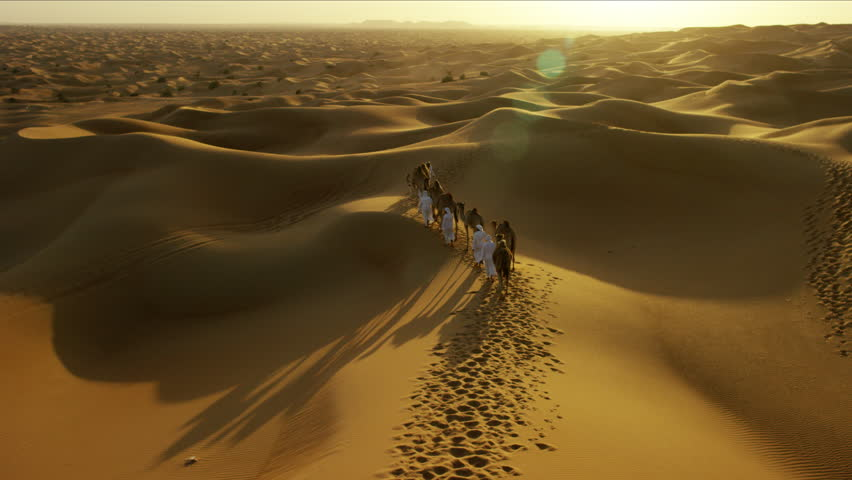 Aerial drone of Middle Eastern male camel owners in desert convoy   Shutterstock HD Video #18614477