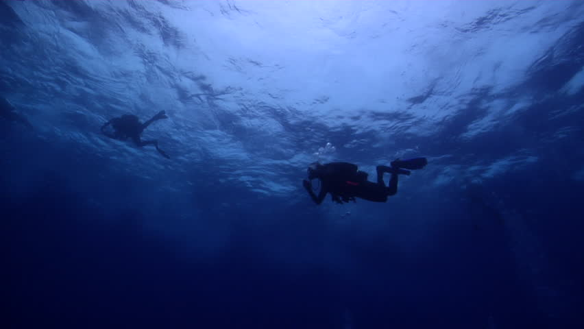 Group of scuba divers swimming in bluewater in Australia, HD, UP31989 | Shutterstock HD Video #18804041
