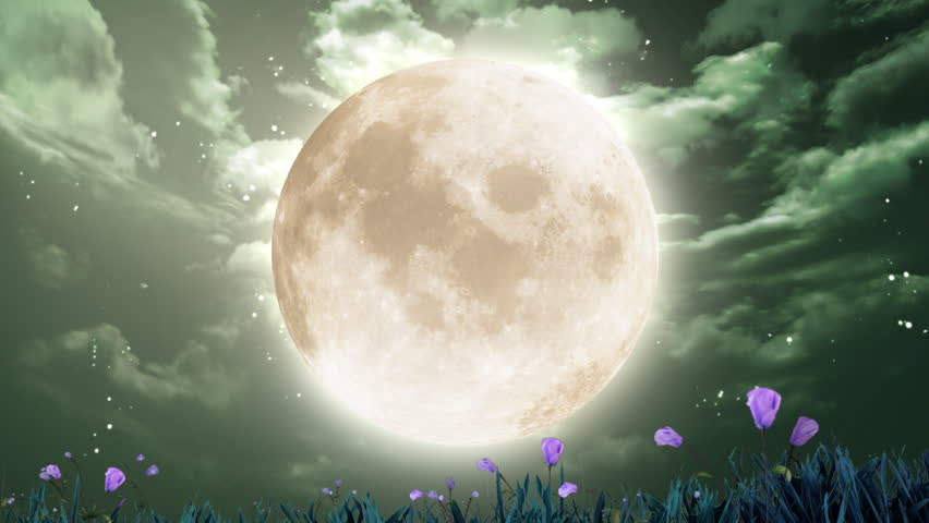 large moon and flowers