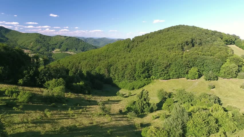 Aerial view of forest, grassland and houses, summer day. | Shutterstock HD Video #19012381