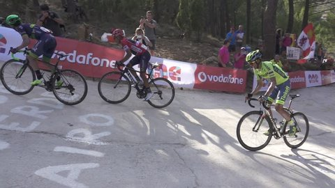 LUCENA DEL CID - SEPTEMBER 7: Alberto Contador (11), Nairo Quintana (7) and Chaves (51) ascend Mas de la Costa mountain in slow motion on September 7, 2016 in Lucena del Cid, Spain