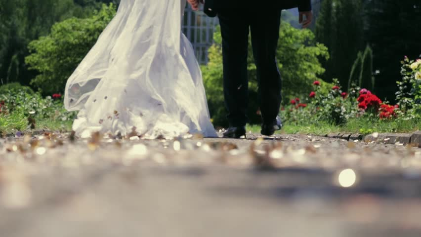 A beautiful married couple walking down the park and holding their hands. Golden glittering confetti is spinning on the ground. Wedding dress. Green trees and a building on the background.
