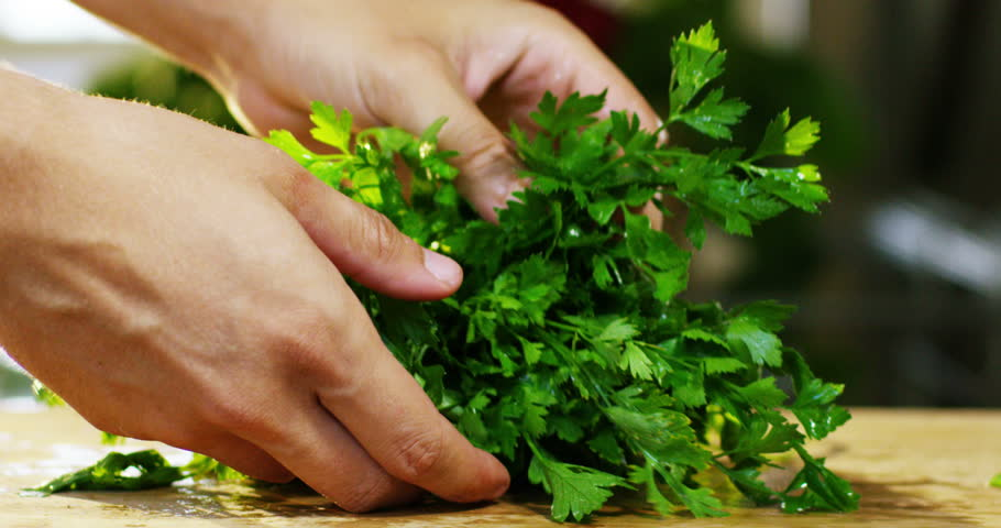 An Italian Chef Checking The Parsley To Choose Most Fragrant And Good For Use