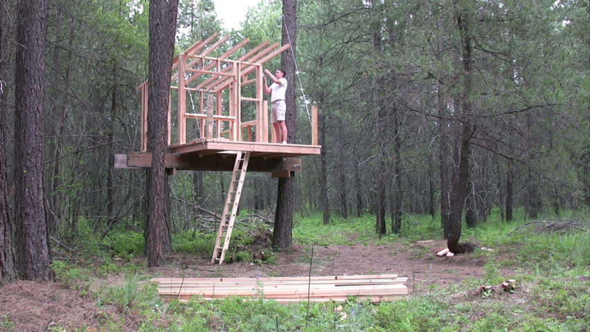 Father framing a tree house in the forest.  Ambient audio.  HD 1080i