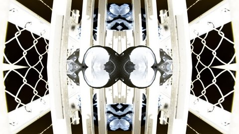 Kaleidoscopic visualization of an animal skull on a fence