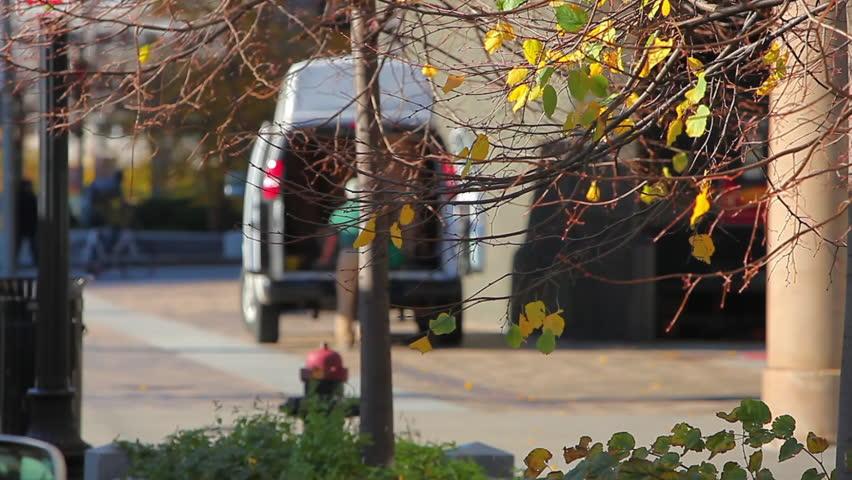 Man unloading truck in Boston, MA.