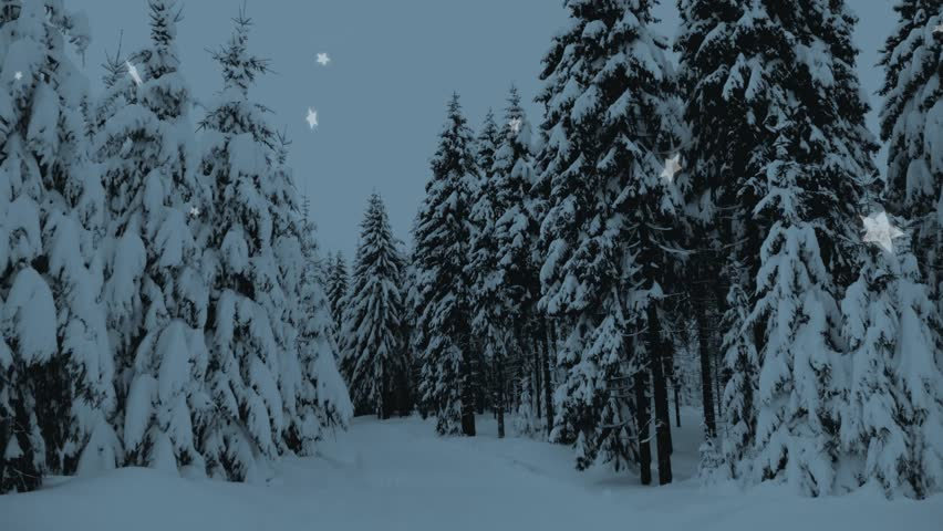 Winter snowy forest with snow covered trees, falling snow and stars. Christmas, new year slow motion animation. HD 1080.