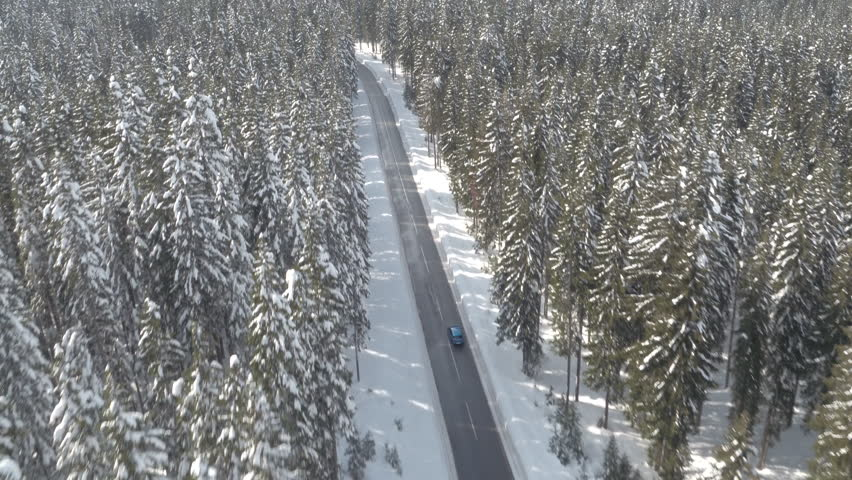 AERIAL: Flying above blue car driving through nice frosty spruce woodland towards mighty rocky mountain peaks covered with fresh snow. Narrow road in the middle of snowy evergreen forest in wintertime