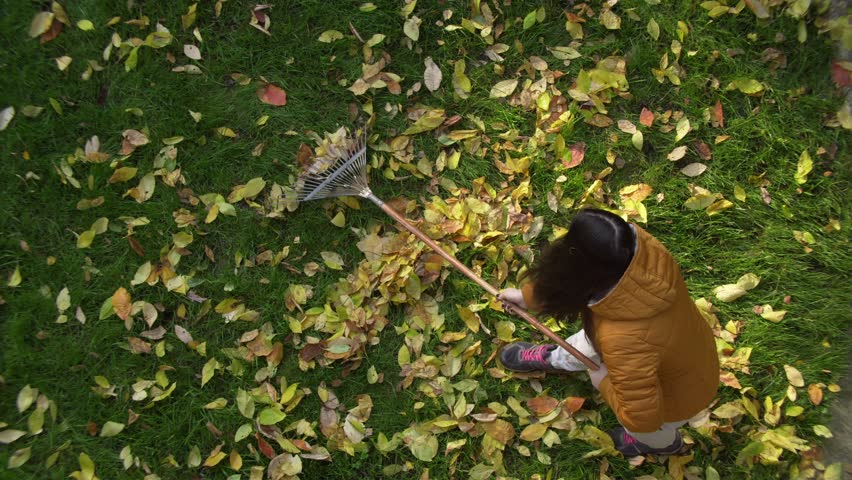 Woman in red boots raking Fall leaves with rake. girl raking Fall leaves with rake.