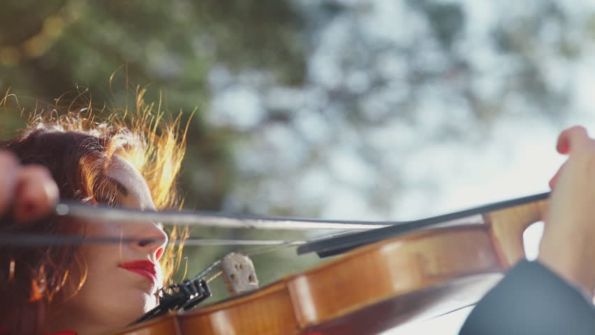 Close-up of Bow and Violin Stock Footage Video (100% Royalty-free) 20431381    Shutterstock