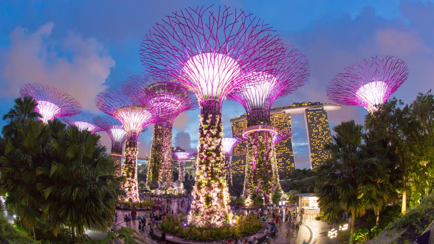 Supertrees at Gardens by the Bay, illuminated at night, Singapore, Southeast Asia (Jun 2016, Singapore)
