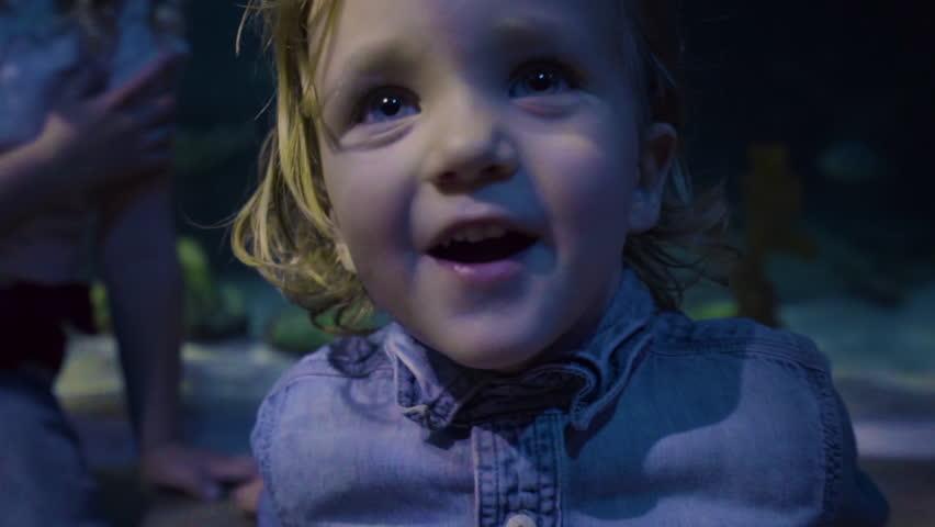 Closeup Of Little Boy Smiling And Looking Around At Aquarium Exhibit