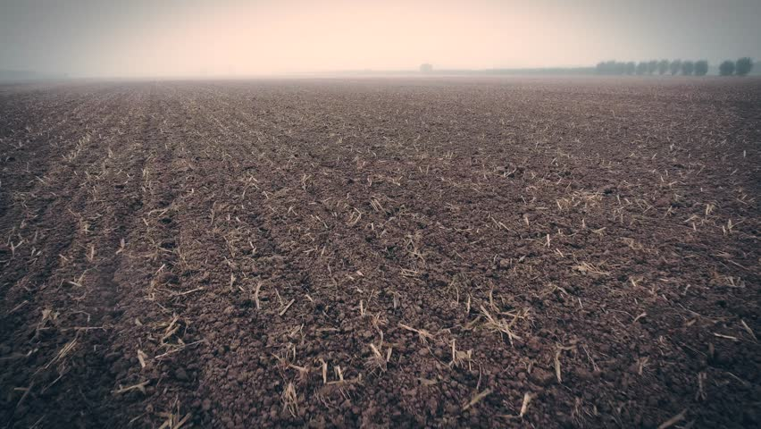 Death earth dramatic lost of crops farmer with no food, bad crops. | Shutterstock HD Video #20915011