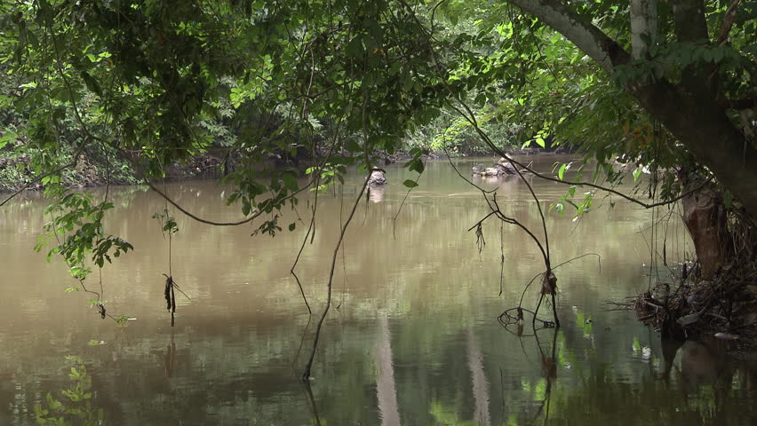 Osogbo, Nigeria - August 2013; Calm Osun River framed by tree branches and vines.