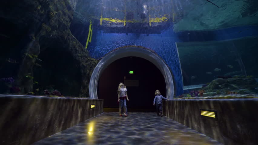 Giant Manta Ray Swims Overhead In Empty Aquarium Tunnel, Children Enter, Little Girl Spins In Circle With Excitement And Wonder, She Points To Shark Swimming Above Them