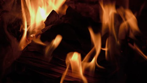 Burning Books In A Fireplace (French Language)