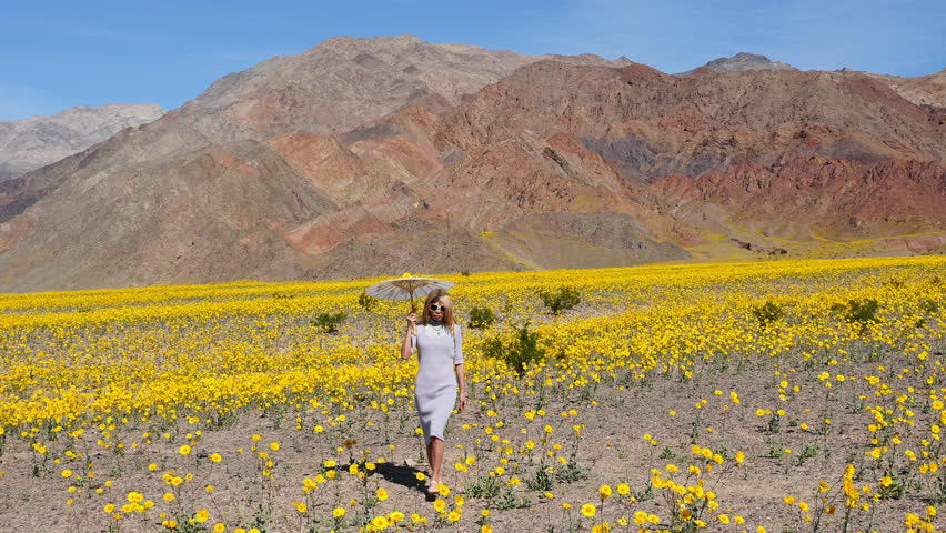 Asian girl walking in field of flowers in death valley stock footage asian girl walking in field of flowers in death valley 4k stock footage clip mightylinksfo