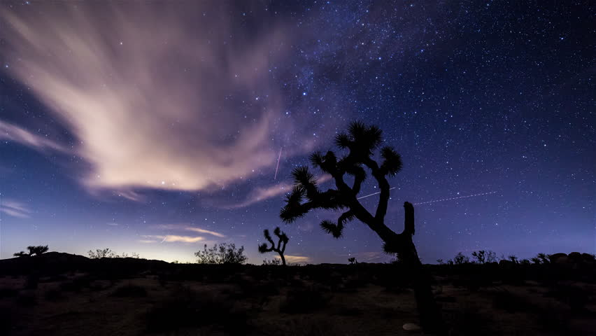 Milky Way and Joshua Tree Timelapse, California