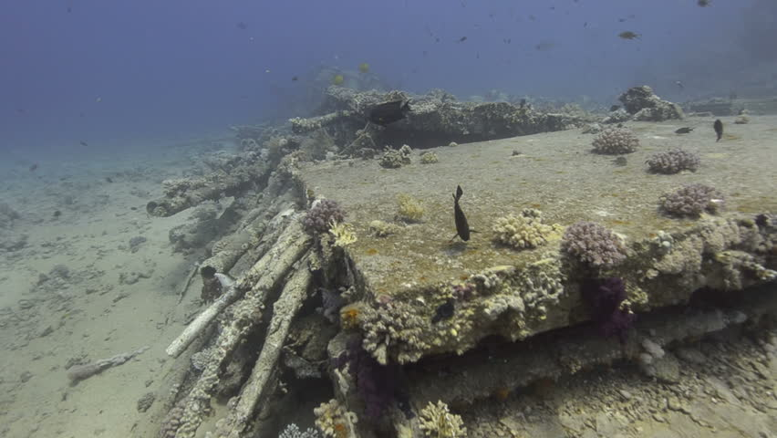 High angle view of Wreckage from a shipwreck left on the ocean floor. Yolanda Shipwreck, Red Sea, Egypt.