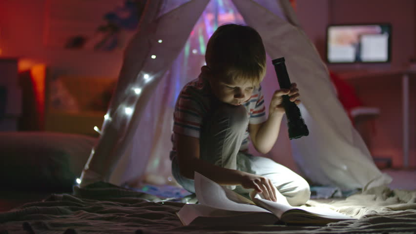 Little boy with flashlight sitting in his room near teepee decorated with fairy lights and looking at book   Shutterstock HD Video #22413283