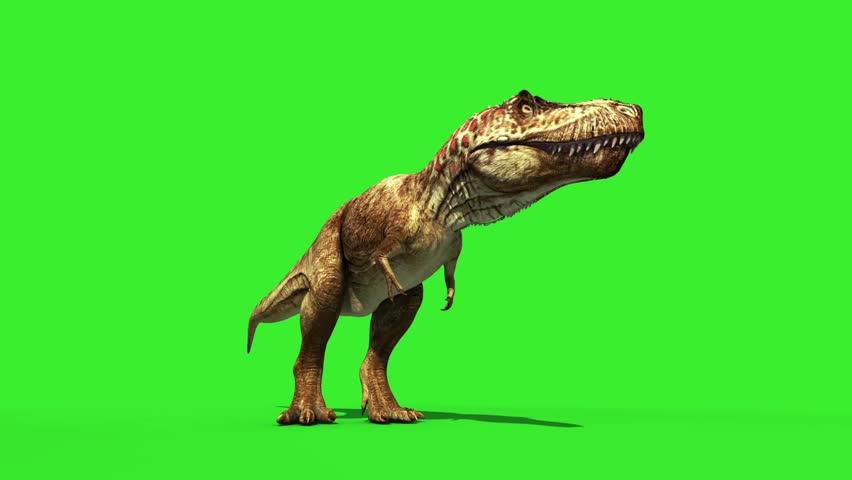 T Rex Tyrannosaur Feathered Roar Down Loop Jurassic World Dinosaurs Green Screen