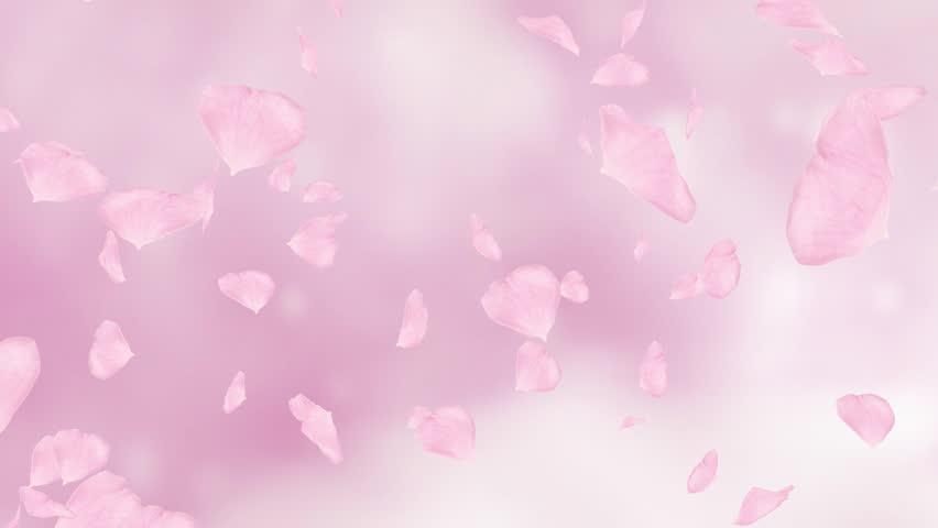 image Japanese pink hair and ebony lesbians