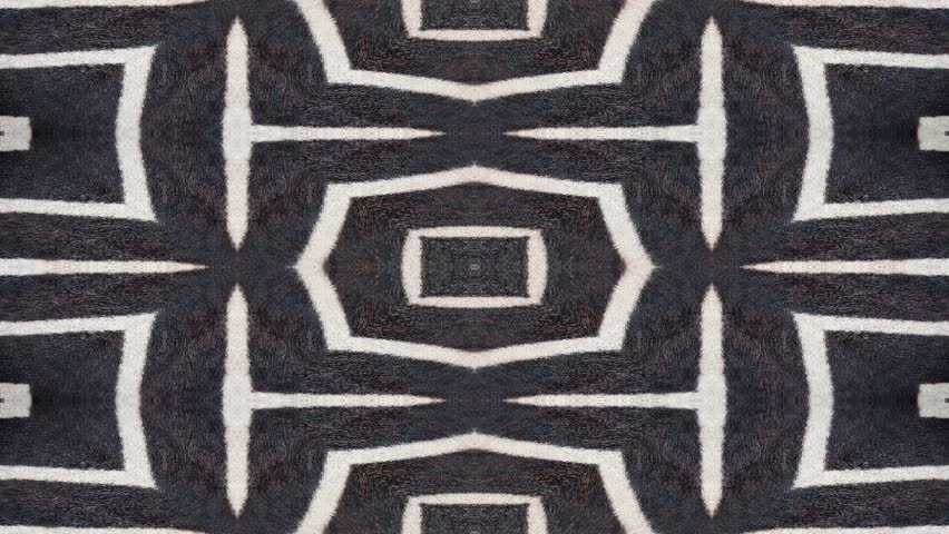Seamless loop animation of abstract background shapes. Natural exotic oriental pattern originally based on zebra stripes.
