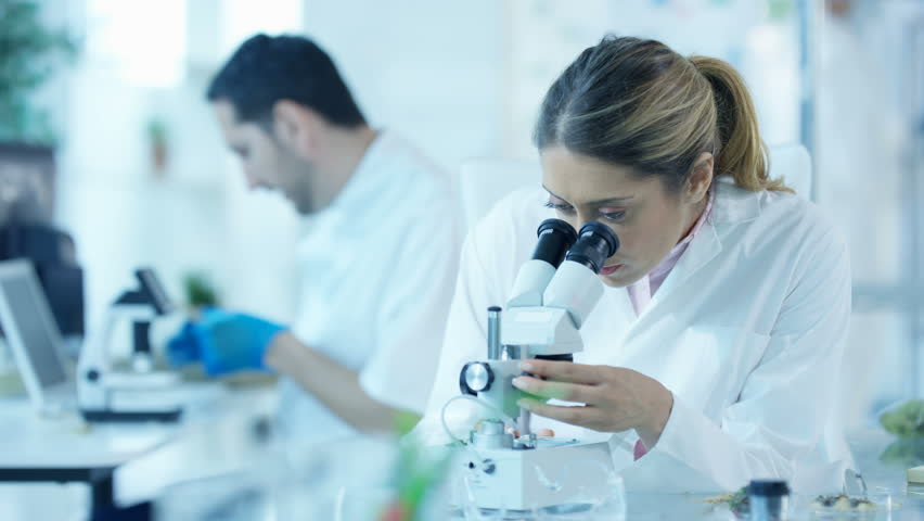 4K Scientific researchers in laboratory, woman analyzing sample under microscope Dec 2016-UK #22862581