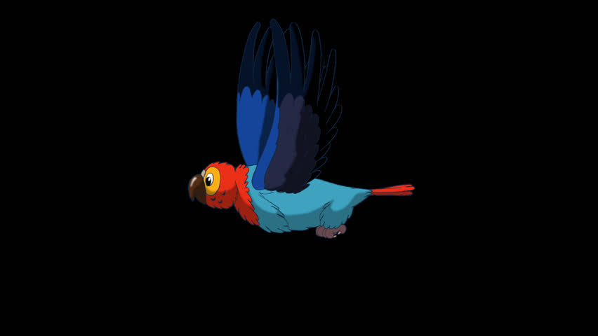 Colorful Parrot Flies. Animated footage with alpha channel. Looped motion graphic.