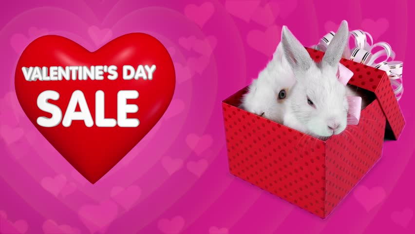 Falling Gift Box Surprise On Valentines Day Sale, Funny Couple Of ...