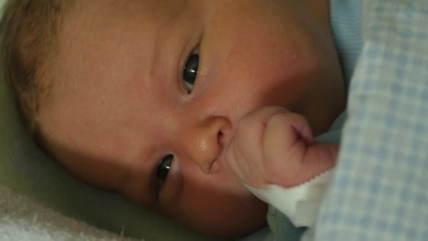 Portrait of 2 days old newborn closeup | Shutterstock HD Video #23321101