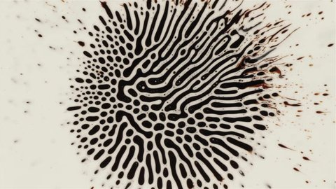 Fantastic patterns and shapes. Ferrofluid and paint. Close-up. HD