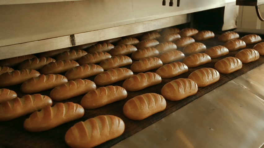 Loaf of bread on the production line in the bakery. Baked loaf of bread in the bakery, just out of the oven with a nice golden color. Bread bakery food factory production with fresh products.