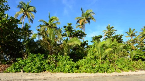 Landscape of a remote tropical beach and a Fijian bure construction on the hill in the Yasawa Islands, Fiji.