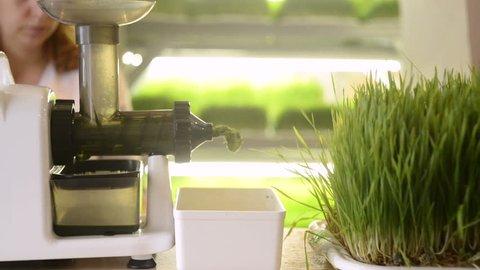 laboratory prepares fresh wheatgrass juice, raw food, healthy eating, close-up
