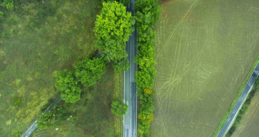 Road in Tuscany. European suburban highway. Aerial shot. Dense thickets of green trees along the highway