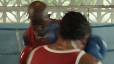 Sport and people, two young men exercising and fighting in boxing gym