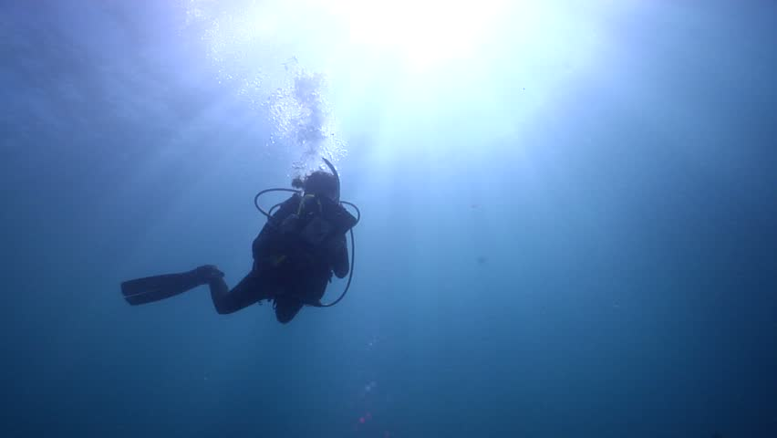Ocean scenery swimming underwater in Could be anywhere | Shutterstock HD Video #2522588