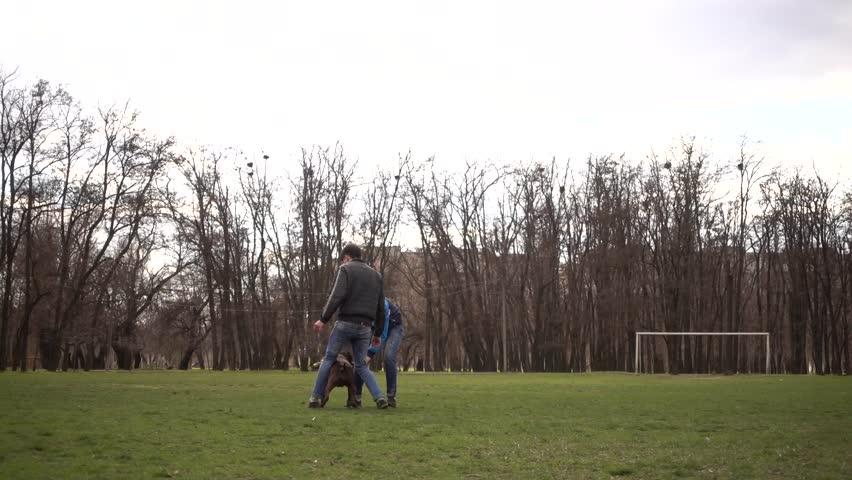 Gay friends videos