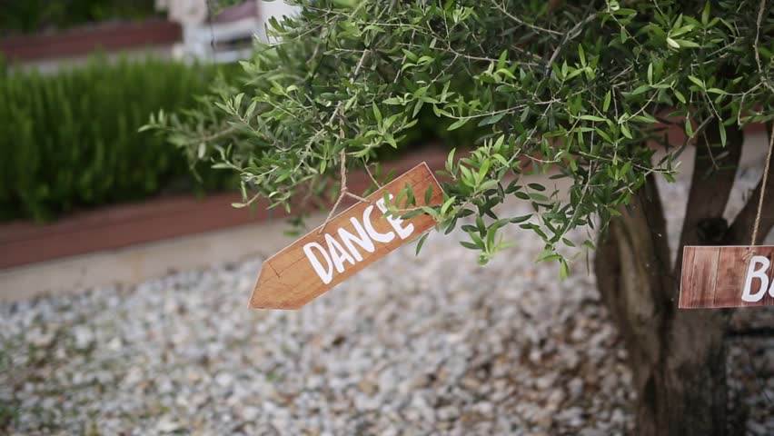 The Tablet Dance On An Olive Tree Wedding Decorations In Montenegro