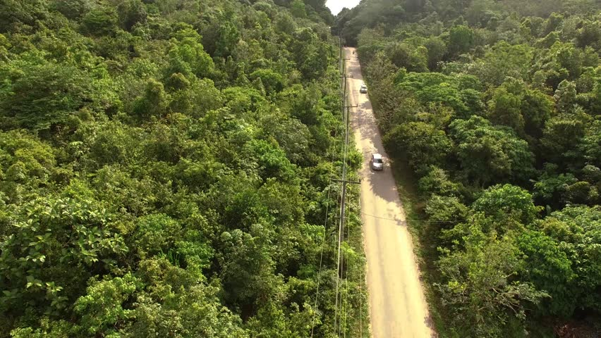 Car driving on a jungle road filmed with drone