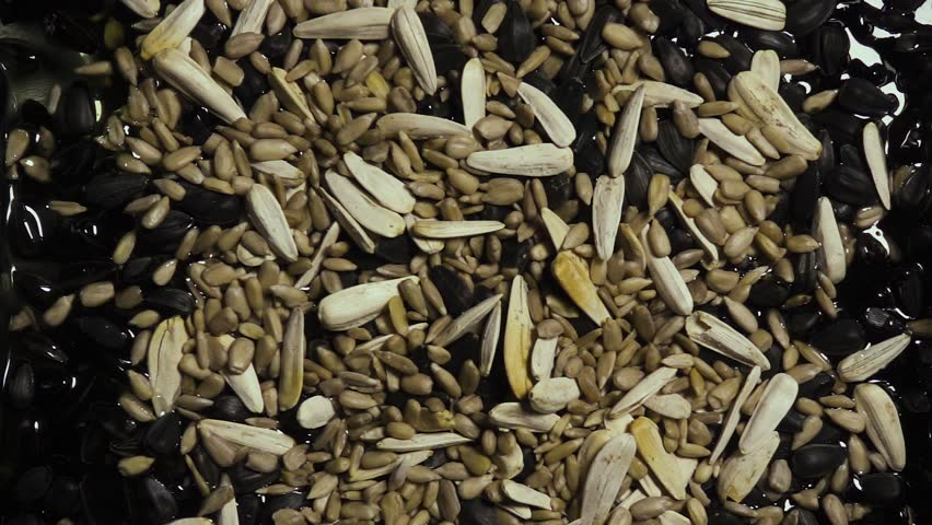 Sunflower seeds peeled, uncleaned and white fall down into sunflower oil. Slow motion | Shutterstock HD Video #25737851