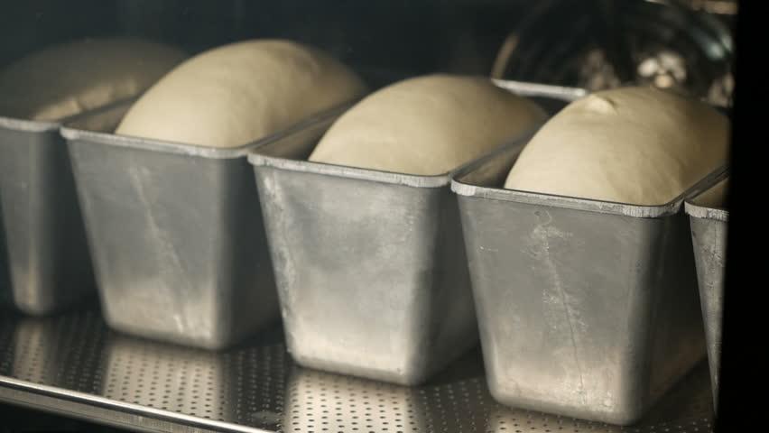 Bread baking in oven. Timelapse.