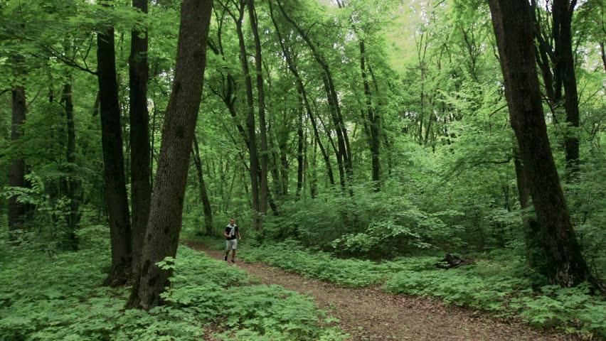 Lone runner in wintry wood, slow motion shot | Shutterstock HD Video #26747881