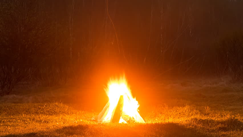 Bonfire Flares Up In The Field Against The Backdrop Of The Forest. Time  Lapse
