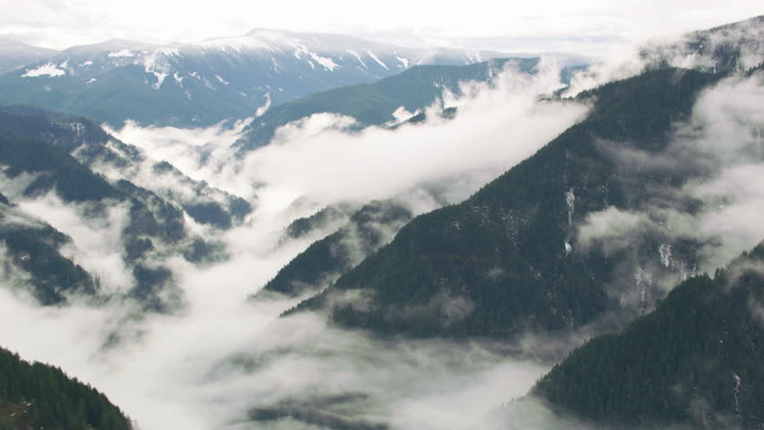 Aerial view of fog and trees in winter, Columbia River Gorge, Oregon | Shutterstock HD Video #27593041