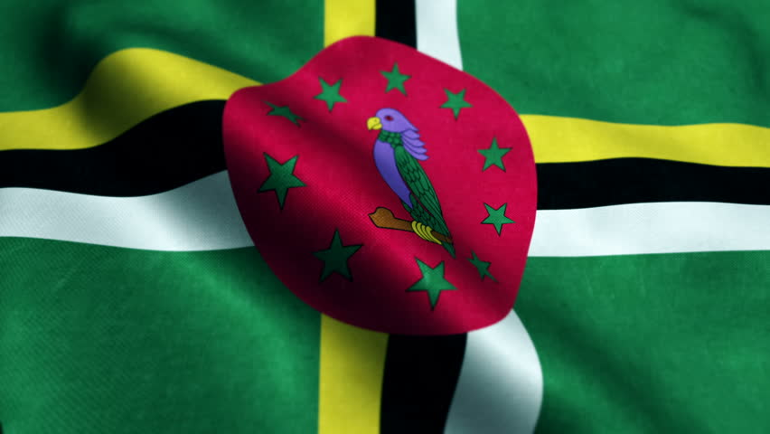 Dominica flag waving seamless loop. Dominica loopable flag with highly detailed fabric texture.