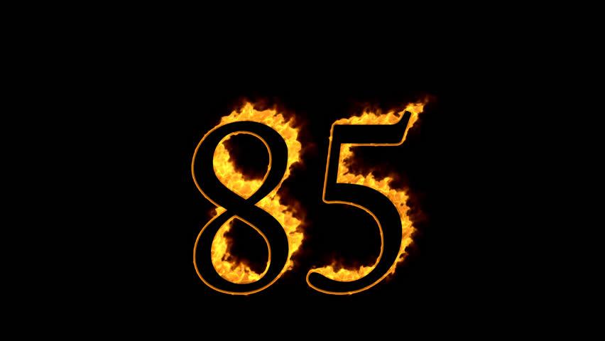 Header of 85