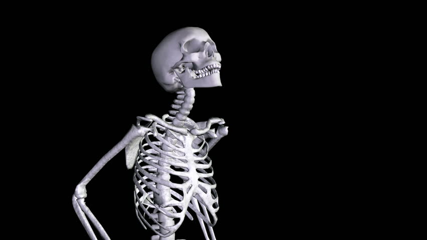 Skeleton Disco dancing. Camera zooms out. Alpha channel appended.